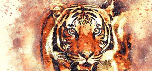 Знак Зодиака Тигр