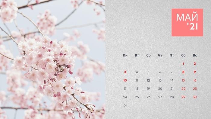 Календарь на май 2021 с праздниками и выходными