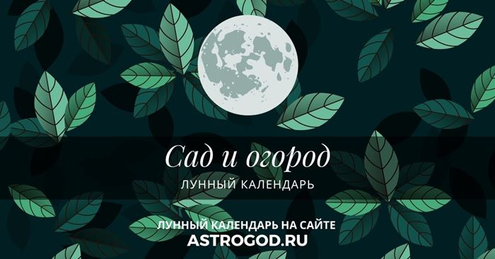 Сад и огород лунный календарь