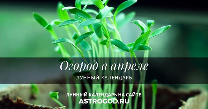 Огород в апреле лунный календарь