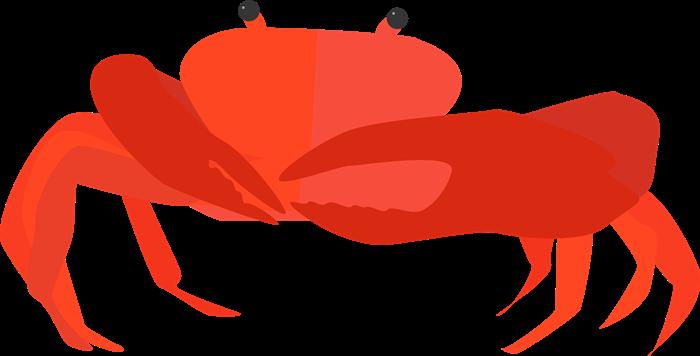 Рак красного цвета
