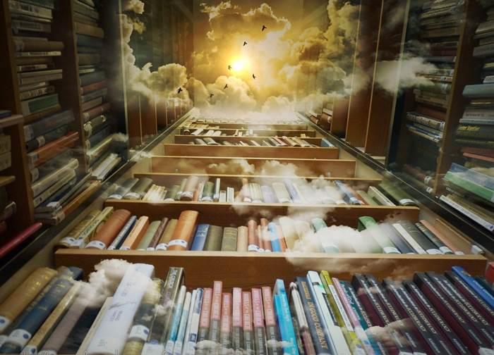 Библиотека картинка