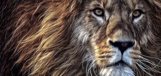 Лев иллюстрация